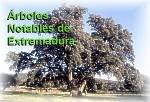 Pocos fondos para proteger el medio ambiente en Extremadura