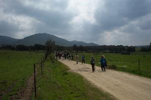 Piden medidas para evitar peligros en el Camino de Santiago.