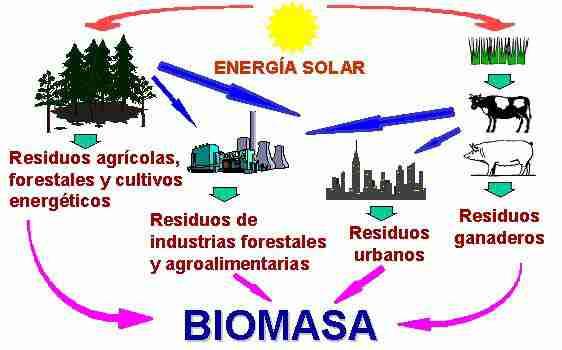 Jornadas sobre biomasa en Plasencia
